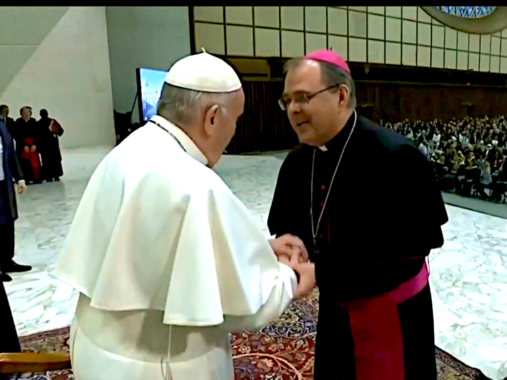 Biskup Radoš sudjelovao na općoj audijenciji s papom Franjom